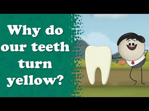 Why do our teeth turn yellow? | It's AumSum Time