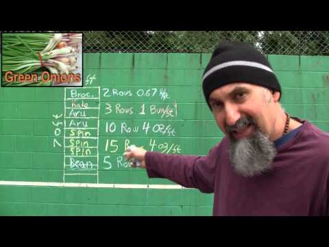 Food and Farming, Part 6: Example #1: Calculating Crop Yield (Math in Real Life)