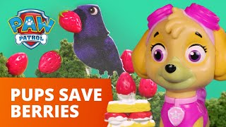 PAW Patrol Pups Save the Strawberries! - Toy Episode - PAW Patrol Official & Friends