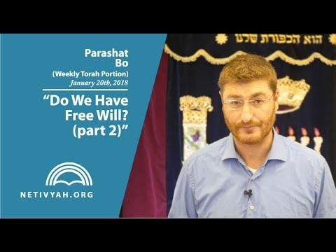 Parashat Bo: Do We Have Free Will? (part 2)