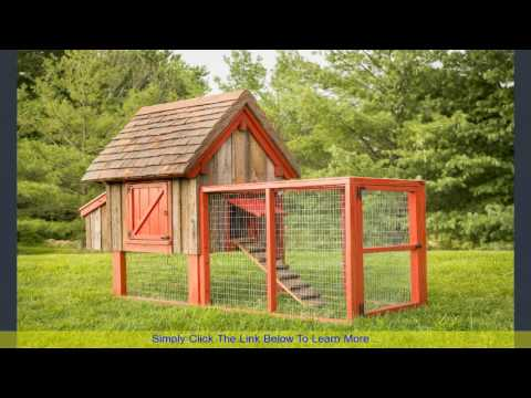 Large Chicken Coops for Sale | Stop Looking and Save Money