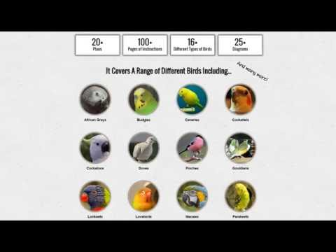 How To Build A Hexagonal Bird Aviary