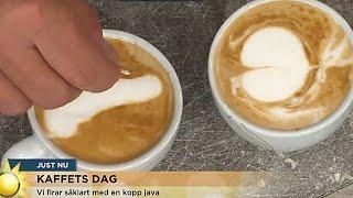 Jenny och Steffo bryter ihop över ekivokt kaffe - Nyhetsmorgon (TV4)
