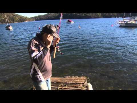 Bream fishing with prawn baits
