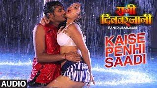 FULL AUDIO - KAISE PENHI SAADI | New Bhojpuri Movie Audio Song 2017 | RANI DILBARJAANI |