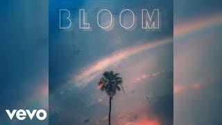 Adam Friedman - Bloom (Audio)