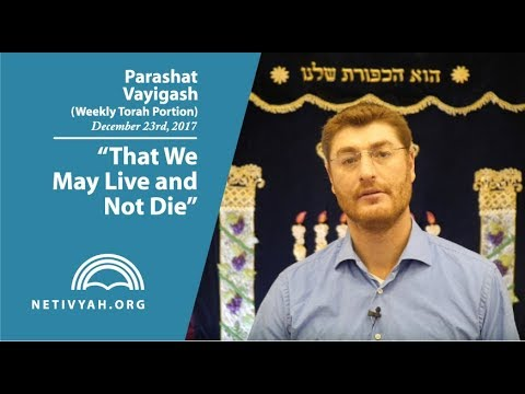 Parashat Vayigash: That We May Live and Not Die