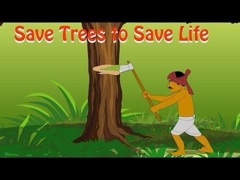 save tree | Save Trees Save Earth | Save Trees Save Life | save tree to save life |