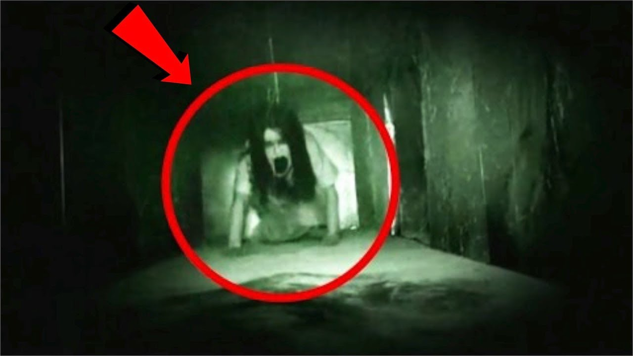 They FOUND this evil creature living in the Walls of my House! (secret room)
