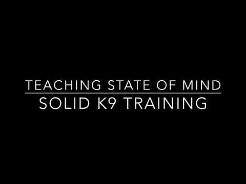 State of mind training for reactive GSD at Seminar