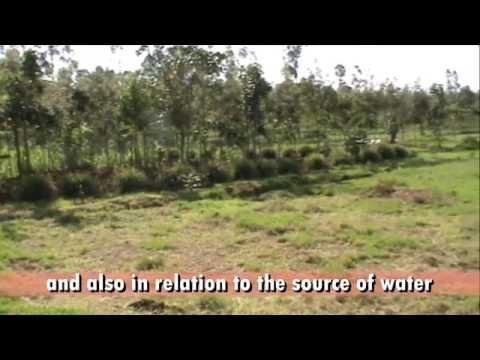 How to select a good site for your fish ponds - VERY IMPORTANT