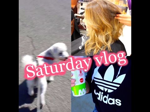 SATURDAY VLOG & COME TO THE SALON WITH ME | Bella Pettinicchio