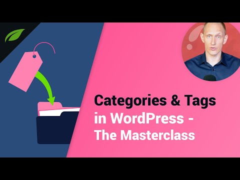 How to Use Categories & Tags in WordPress - The Masterclass