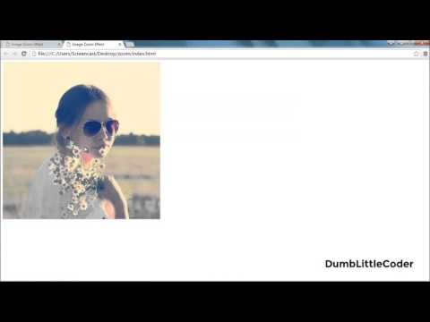 Scale on Hover with CSS3 Transition | Tutorials in Hindi