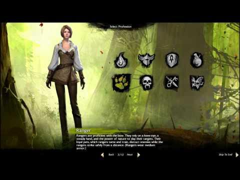Guild Wars 2 - Human Female Profession Gear Sets