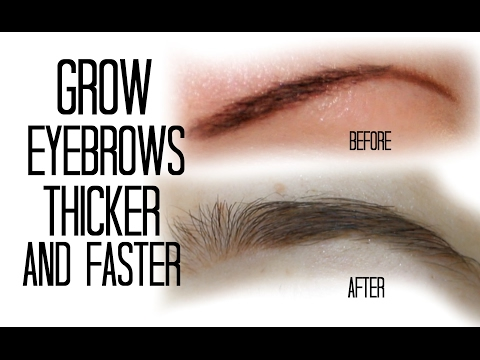 HOW TO GROW YOUR EYEBROWS THICKER AND FASTER NATURALLY! | Stesha