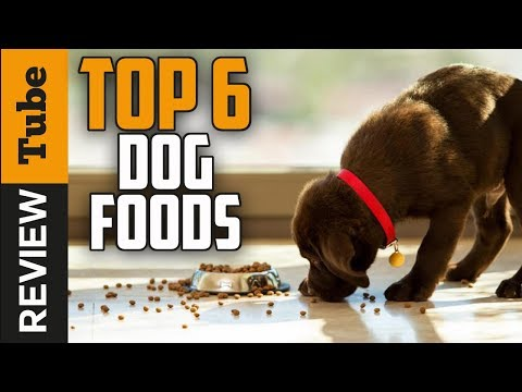 ✅Dog Food: The best Dog Food 2018 (Buying Guide)