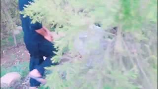 jungle main mangal |Ladka ladki ko chodta pakda gaya