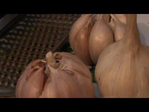 Cara Mengobati Sakit Gigi Secara Alami Dengan Bawang Putih