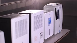 Dehumidifier Buying Guide (Interactive Video) | Consumer Reports