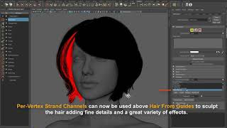 Ornatrix Maya: Male head and facial hair tutorial - PakVim
