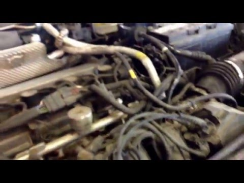 Catalytic converter costs $699; Engine light on Ford Focus 2004; Supreme Auto