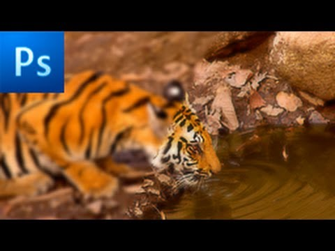 Photoshop Tutorial: Sharpen Blurry or Out of Focus Images -HD-