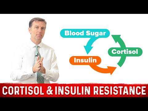 Cortisol Resistance & Insulin Resistance: Explained!