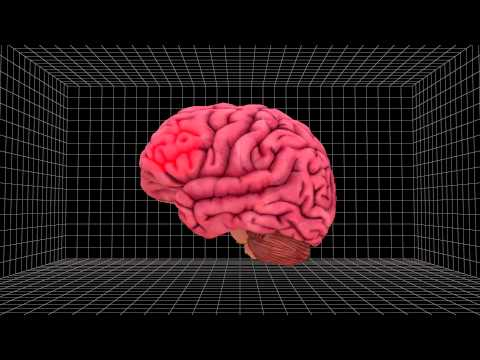 Electrical stimulation may improve brain's mathematical abilities