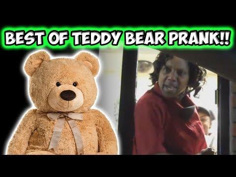 BEST OF TEDDY BEAR PRANK!!!