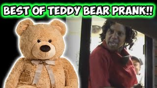 Best Of Teddy Bear Prank