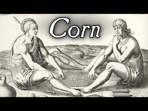 Cooking Corn With Ashes - Q&A