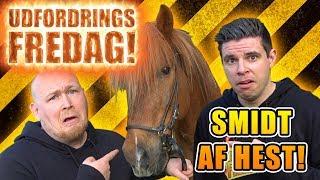 Udfordrings-fredag - Rider på hest