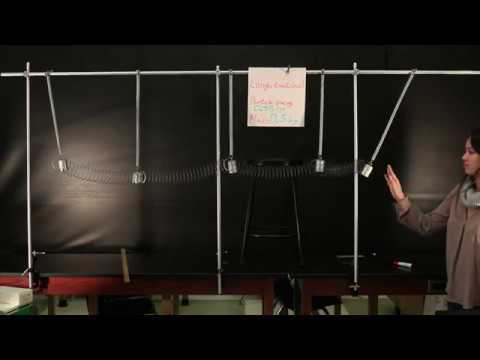 Coupled Simple Harmonic Oscilators Demonstrate Wave Motion   Doc Physics