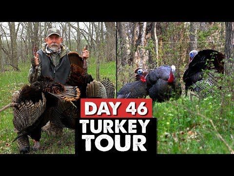 TED MILLER DOUBLES UP!  - Turkey Tour Day 46