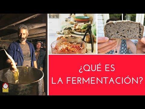 Introducción a la Fermentación con SANDOR KATZ (subtitulado)