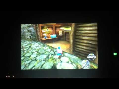 Hyrule loach in Ocarina of Time 3D