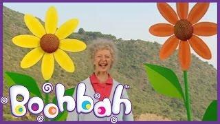 Boohbah - Flowers & Vase | Episode 33