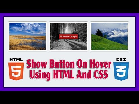 Show Button On Hover Using HTML5 And CSS3   Web Design Tutorial
