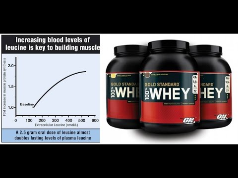 The Whey Protein Probe: Overly Anabolic?