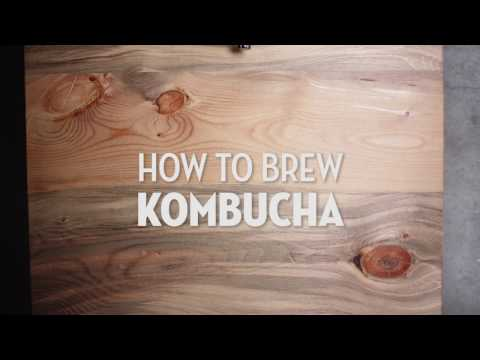 How to Brew Kombucha in 60 Seconds