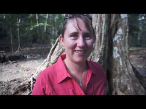 Christmas Island - Indian Ocean Experiences
