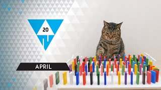 WIN Compilation APRIL 2020 Edition   Best of March