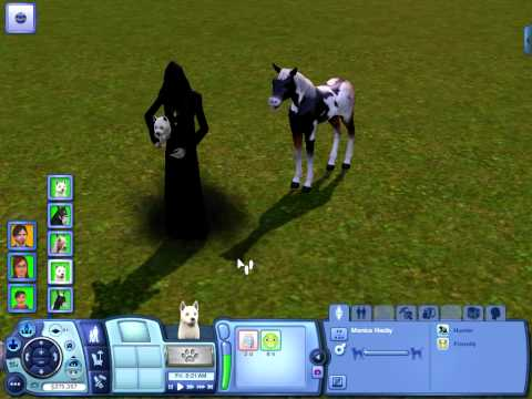 The Sims 3 Pets: Dog dying