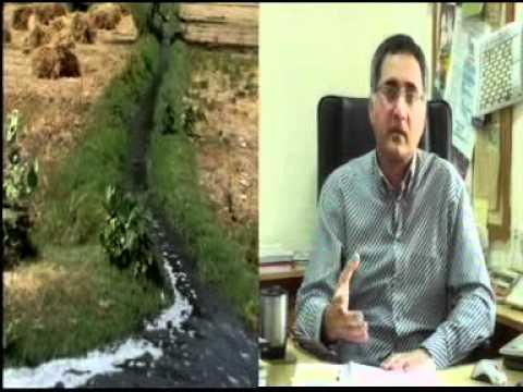 Water Pollution of River Ravi (Urdu).DAT