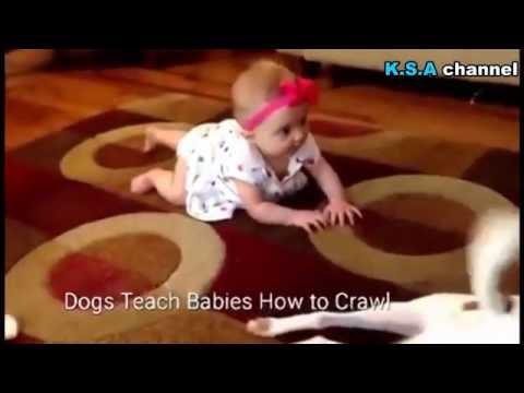 كيف تعلم طفلك الحبو ؟!   How do you teach your baby to crawl