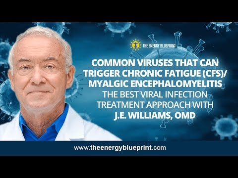 Common Viruses That Can Trigger CFS │ The Best Viral Infection Treatment Approach