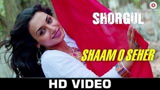 Shaam O Seher - Shorgul   Suha Gezen, Aniruddh Dave & Hiten Tejwani   Vishal Mishra   Lalit Pandit