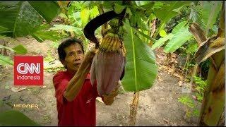 Profesor Pisang dari Dusun Ponggok   CNN Indonesia Heroes