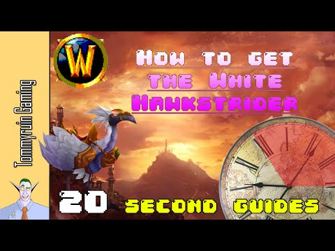 [WoW] 20 Second Guides: How to get the White Hawkstrider mount